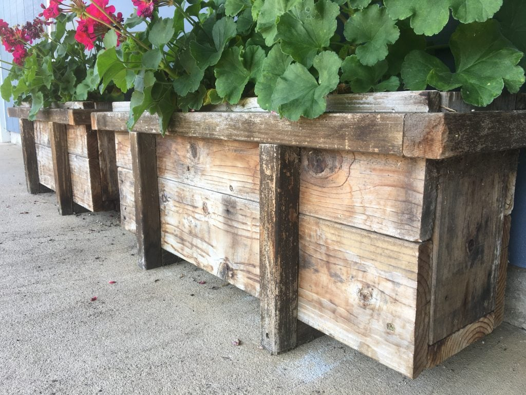Two wood planter boxes side by side with greenery and pink flowers in them