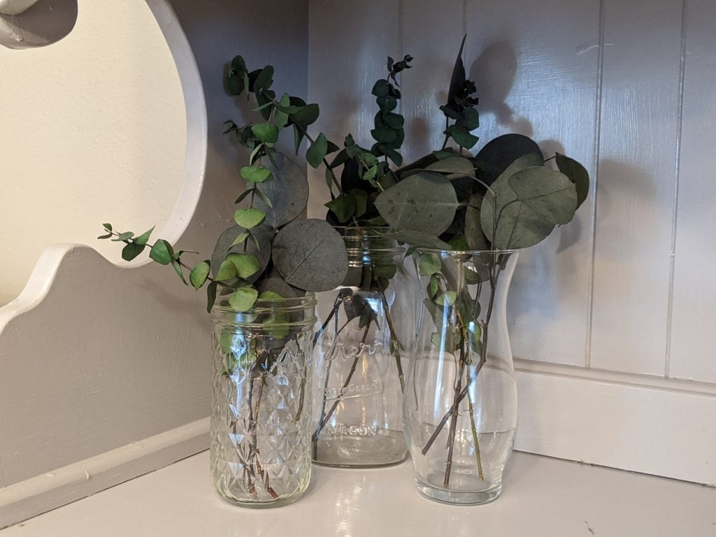 Three glass vases filled with greenery sitting on a grey shelf with a grey wood wall background